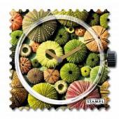 Stamps Uhr Cactus
